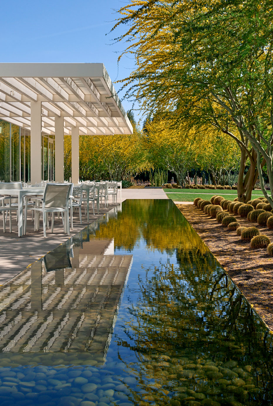 A view toward the Sunnylands Cafe patio with the low-evaporative water fountain in the foreground and blooming Palo Brea trees on the right.